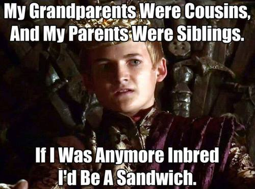 Game of Thrones Joffrey Inbred joffrey cersi jamie lannister meme funny meme addictedtoeverything ate best game of thrones memes season 1 4