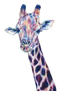 giraffe_claudine-osullivan unreal pencil drawings top colouring pencil illustrations englands top illustrators cool art part 2 addictedtoeverything