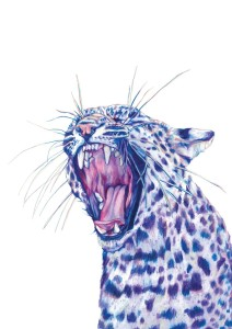leopard BEARWEB fox_claudine-osullivan unreal pencil drawings top colouring pencil illustrations englands top illustrators cool art part 2 addictedtoeverything