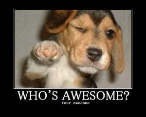whos awesome puppy dog meme
