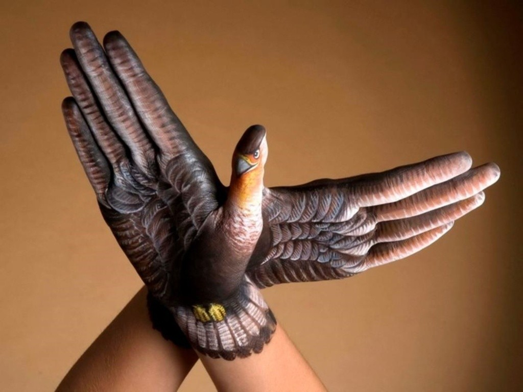 body-painting-animals-7-wide-wallpaper birds on hands body cool bodypainting learn how to bodypaint