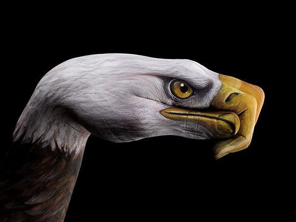 body-painting-animals-7-wide-wallpaper eagle birds on hands body cool bodypainting learn how to bodypaint