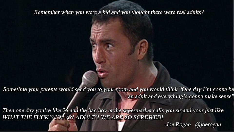 joe rogan quotes on life being an adult joe rogan ufc mma presenter podcast funny love wife children
