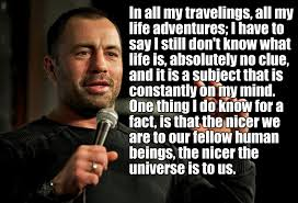joe rogan quotes on life havent a clue on life on humanity joe rogan ufc mma presenter podcast funny love wife children