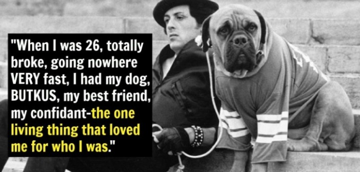 SYLVESTER-STALLONE-SUCCESS-STORY-RAGS-TO-RITCHES-MOST-INSPIRATIONAL-MOTIVATIONAL-HEART-WARMING-DOG-ADDICTED-TO-EVERYTHING